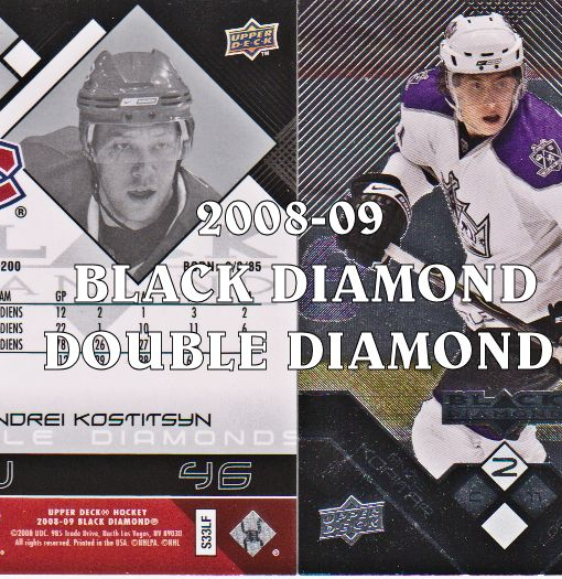 2008-09 Black Diamond #116 Martin Biron