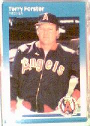 1987 Fleer #80 Terry Forster