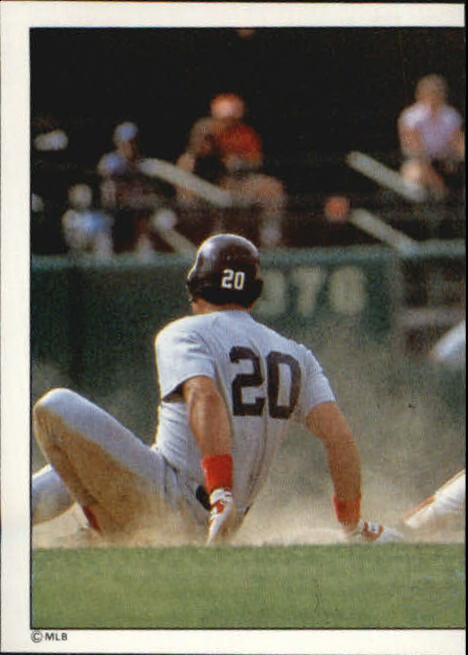 1988 Panini Stickers #10 Orioles TL/Action photo