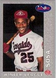 1993 Lime Rock Dominican Winter Baseball #31 Samuel Sosa