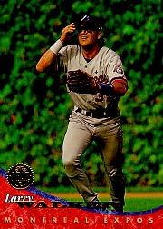1994 Leaf #397 Larry Walker