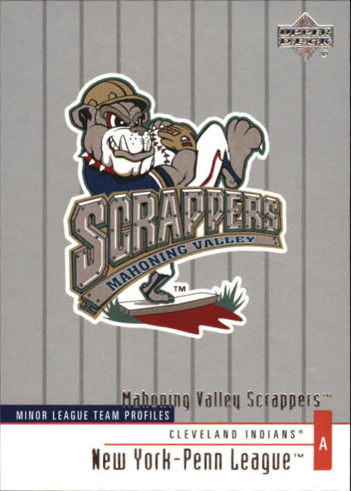 2002 UD Minor League #316 Mahoning Valley Scrappers TM