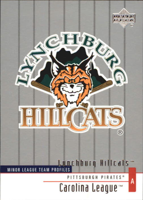 2002 UD Minor League #352 Lynchburg Hillcats TM