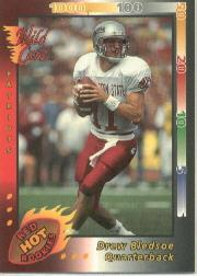 1993 Wild Card Red Hot Rookies #48 Drew Bledsoe
