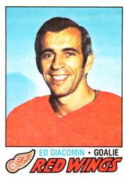 1977-78 O-Pee-Chee #70 Ed Giacomin