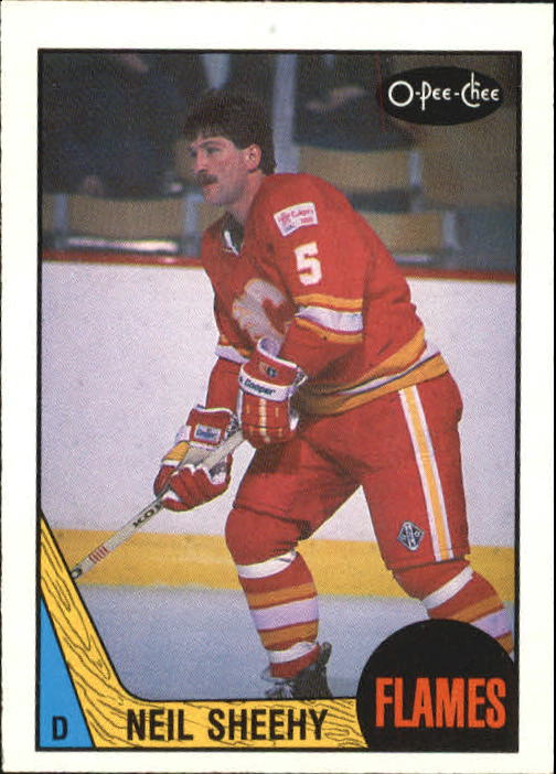 1987-88 O-Pee-Chee #213 Neil Sheehy RC