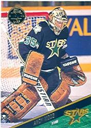 1993-94 Leaf #369 Andy Moog