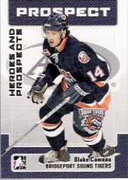 2006-07 ITG Heroes and Prospects #168 Blake Comeau