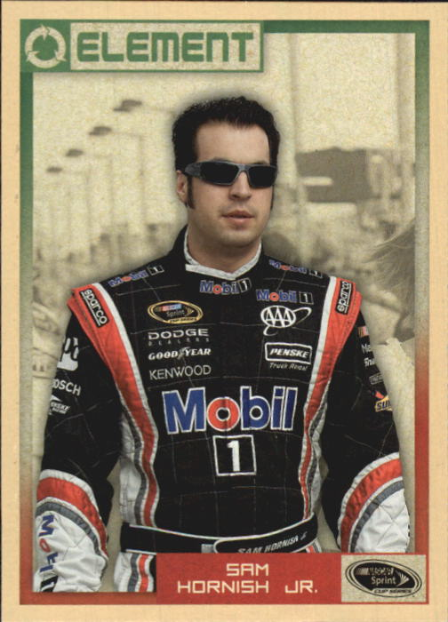 2010 Element #19 Sam Hornish Jr.