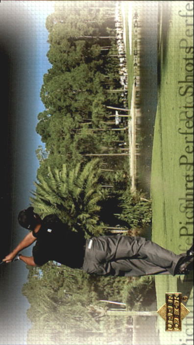 2004 Upper Deck #80 Tiger Woods PPS