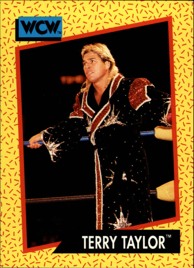 1991 Impel WCW #69 Terry Taylor
