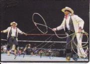 1994 Action Packed WWF #25 Smoking Gunns