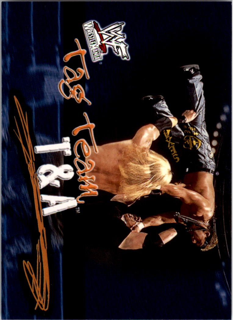 2001 Fleer WWF Wrestlemania #74 T and A