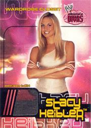 2002 Fleer WWE Absolute Divas Wardrobe Closet #4 Stacy Keibler
