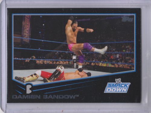 2013 Topps WWE Black #52 Damien Sandow