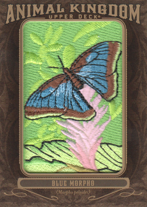 2013 Upper Deck Goodwin Champions Animal Kingdom Patches #AK203 Blue Morpho LC