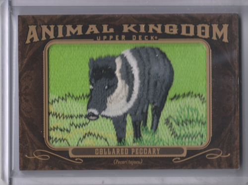 2013 Upper Deck Goodwin Champions Animal Kingdom Patches #AK204 Collared Piccary LC