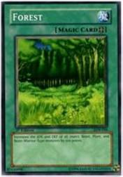 2002 Yu-Gi-Oh Legend of Blue Eyes White Dragon 1st Edition #LOB-46  Forest