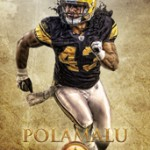 9001_Veteran-Base-Card_Polamalu