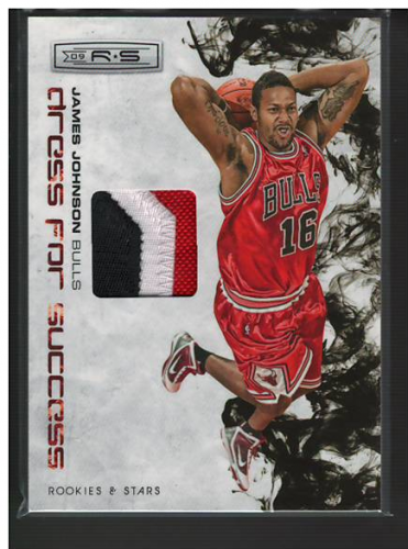 2009-10 Rookies and Stars Dress for Success Materials Prime #15 James Johnson