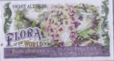 2011 Topps Allen and Ginter Mini Flora of the World #FOW5 Sweet Alyssum