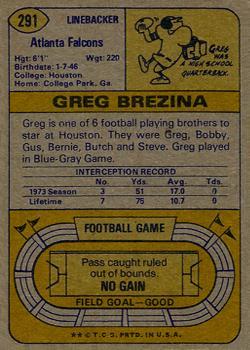 1974 Topps #291 Greg Brezina back image