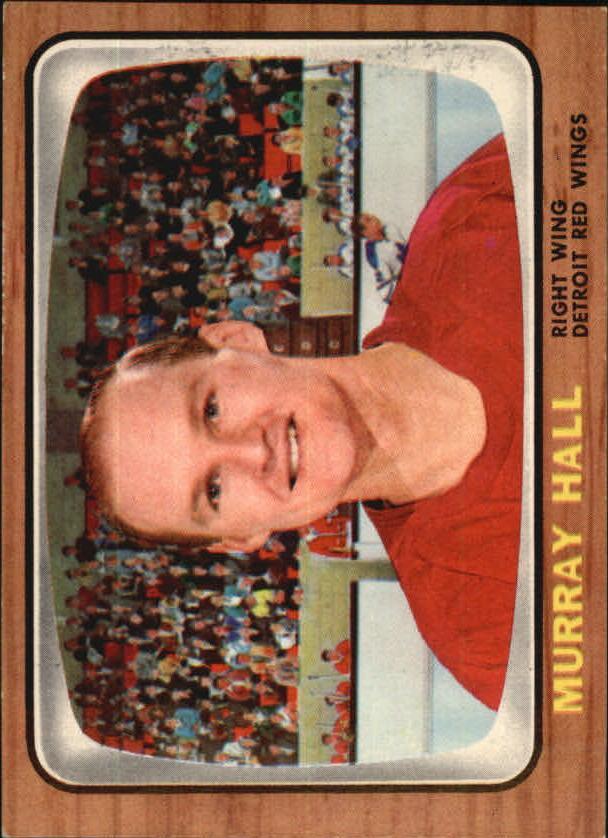 1966-67 Topps #105 Murray Hall