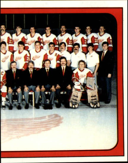 1988-89 Panini Stickers #49 Red Wings Team RH