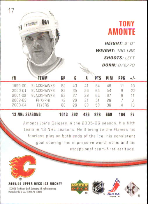 2005-06 Upper Deck Ice #17 Tony Amonte back image