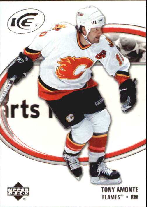 2005-06 Upper Deck Ice #17 Tony Amonte