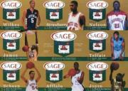 2002 SAGE Pangos Sheets Gold #4 Sheet 4/DeMarcus Nelson/Sebastian Telfair/Dru Joyce III/D.J. Strawberry/Header Card/Aaron Afflalo/Omar Wilkes/LeBron James/Harrison Schaen