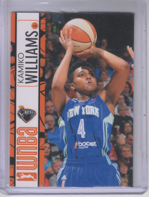 2013 WNBA #53 Kamiko Williams RC