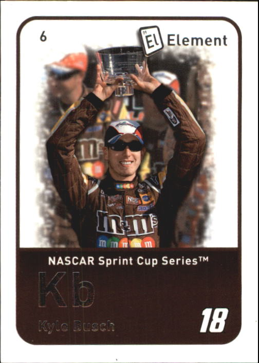 2009 Element #6 Kyle Busch