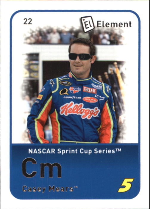 2009 Element #22 Casey Mears