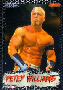 2008 TriStar TNA Impact #17 Petey Williams