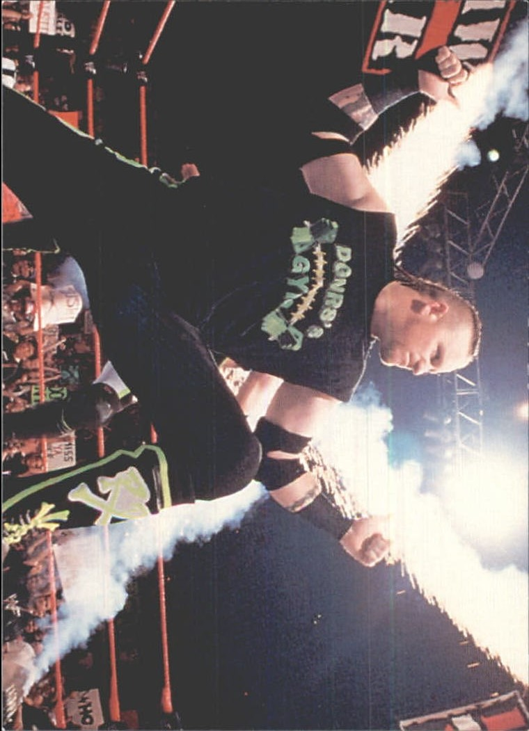 1999 Comic Images WWF Smackdown #9 The Road Dogg