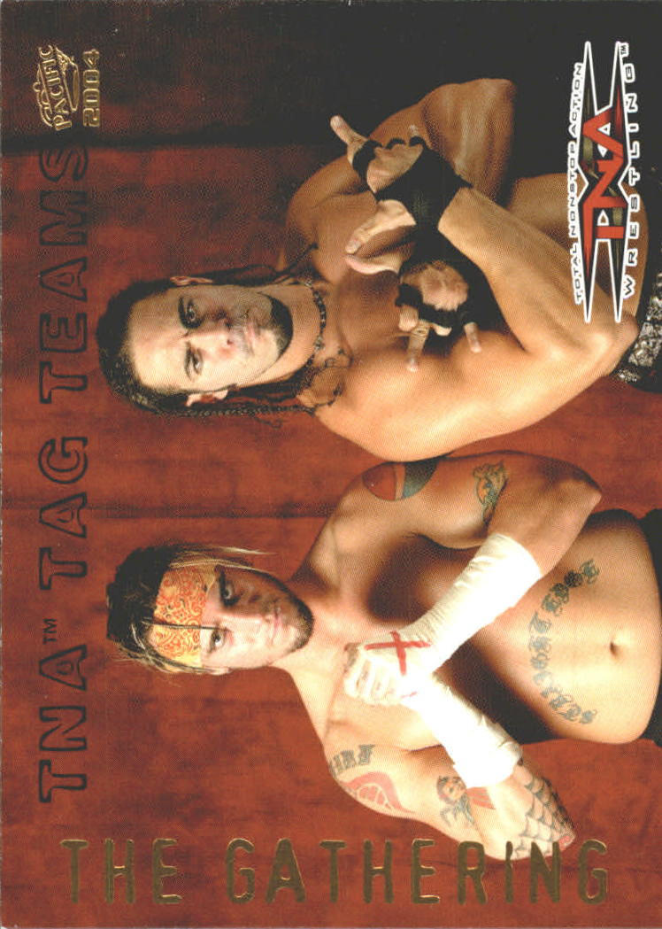 2004 Pacific TNA Tag Teams #4 The Gathering