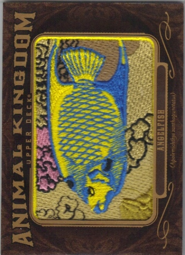 2013 Upper Deck Goodwin Champions Animal Kingdom Patches #AK202 Angelfish LC