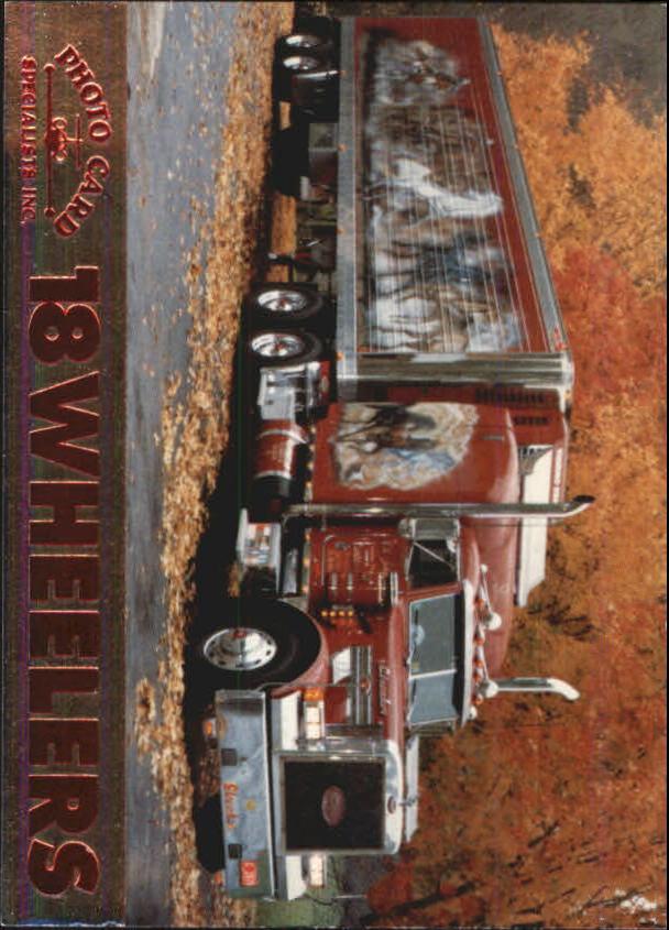 1994 18 Wheelers #5 Streaker